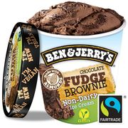 Ben & Jerry's Non dairy chocolate fudge brownie 120ml